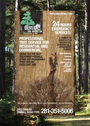 Sample design: print ad for tree service