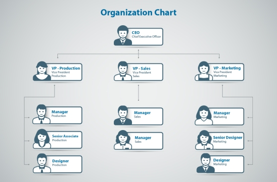 organizational structure zappos Organizational structure refers to how individual and team work within an organization are coordinated to achieve organizational goals and objectives, individual work needs to be coordinated and managed structure is a valuable tool in achieving coordination, as it specifies reporting relationships (who reports to whom), delineates formal communication channels, and describes how separate.